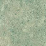 P231 Terranova - Arborite