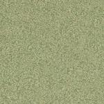 P302 Green Xabia - Arborite