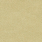 P332 Natural Chamois - Arborite