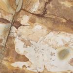 Palomino - Quartzite