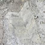 Splendour White - Granite polished