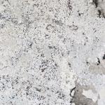Supreme White - Granite polished