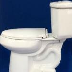 Lesso Elongated - Dual flush